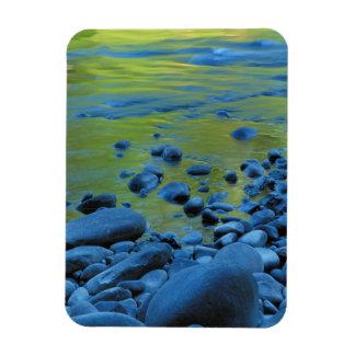 USA, Washington, Olympic National Park 4 Rectangle Magnets