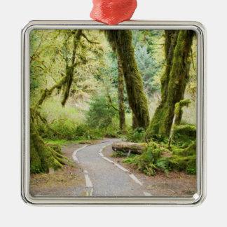 USA, Washington, Olympic National Park, Hiking Square Metal Christmas Ornament