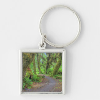 USA, Washington, Olympic National Park, Hoh 2 Silver-Colored Square Keychain