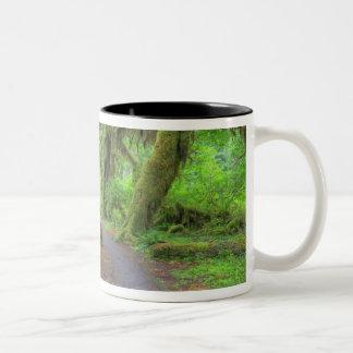 USA, Washington, Olympic National Park, Hoh 2 Two-Tone Coffee Mug
