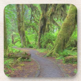 USA, Washington, Olympic National Park, Hoh Rain Beverage Coaster