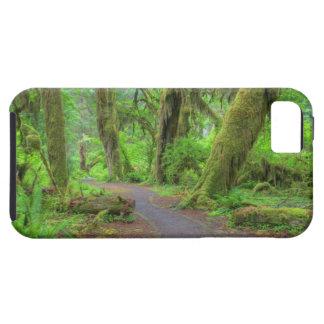 USA, Washington, Olympic National Park, Hoh Rain iPhone SE/5/5s Case