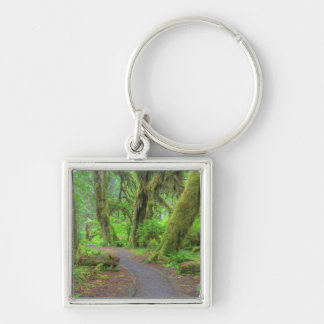 USA, Washington, Olympic National Park, Hoh Rain Silver-Colored Square Keychain