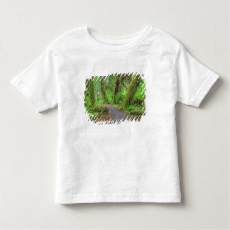 USA, Washington, Olympic National Park, Hoh Rain Toddler T-shirt