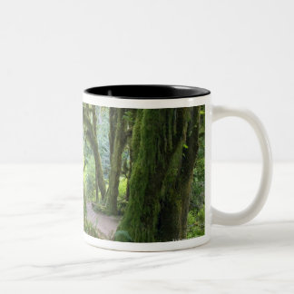 USA, Washington, Olympic National Park, Hoh Rain Two-Tone Coffee Mug