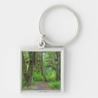 USA, Washington, Olympic National Park, Hoh Silver-Colored Square Keychain