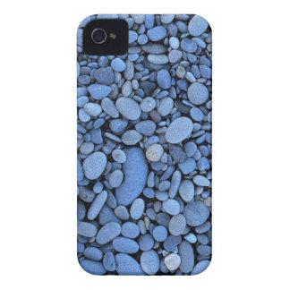USA, Washington, Olympic National Park, La Push iPhone 4 Case-Mate Case