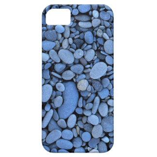 USA, Washington, Olympic National Park, La Push iPhone SE/5/5s Case