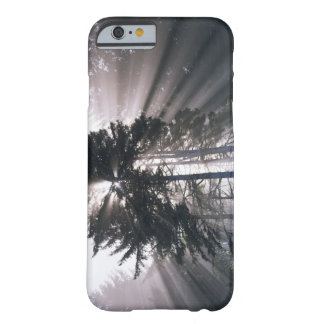 USA, Washington, Olympic National Park, Morning Barely There iPhone 6 Case
