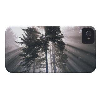 USA, Washington, Olympic National Park, Morning Case-Mate iPhone 4 Case