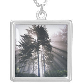 USA, Washington, Olympic National Park, Morning Silver Plated Necklace