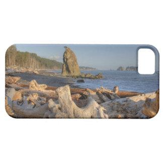 USA, Washington, Olympic National Park, Rialto iPhone SE/5/5s Case