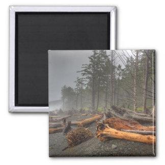 USA, Washington, Olympic National Park, Rialto Magnet