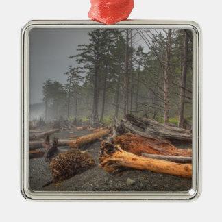 USA, Washington, Olympic National Park, Rialto Metal Ornament