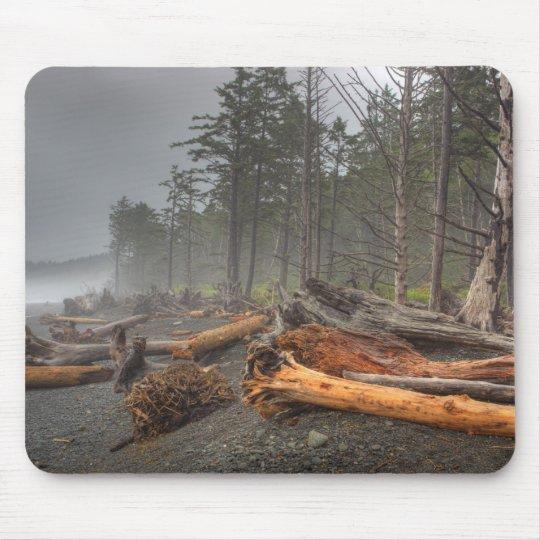 USA, Washington, Olympic National Park, Rialto Mouse Pad