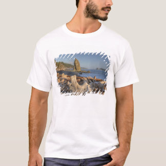 USA, Washington, Olympic National Park, Rialto T-Shirt