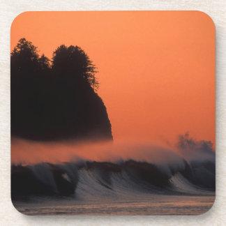 USA, Washington, Olympic National Park, Sea Beverage Coaster