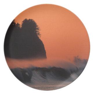 USA, Washington, Olympic National Park, Sea Melamine Plate