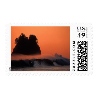 USA, Washington, Olympic National Park, Sea Postage