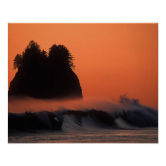 USA, Washington, Olympic National Park, Sea Poster