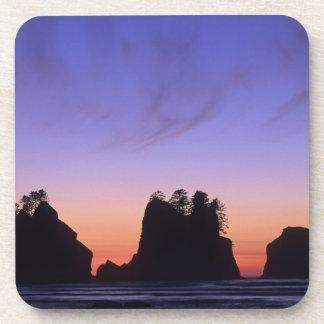 USA, Washington, Olympic National Park, Shi-shi Drink Coasters