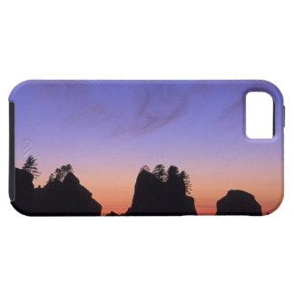 USA, Washington, Olympic National Park, Shi-shi iPhone SE/5/5s Case