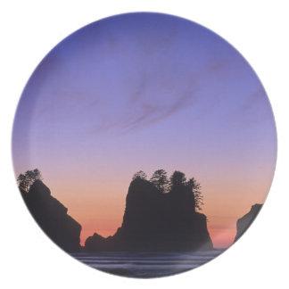 USA, Washington, Olympic National Park, Shi-shi Melamine Plate