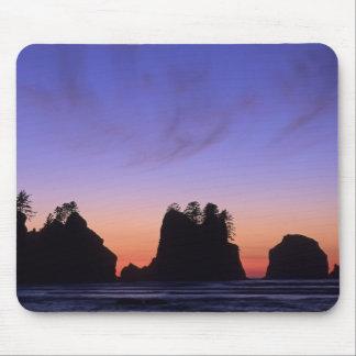 USA, Washington, Olympic National Park, Shi-shi Mouse Pad