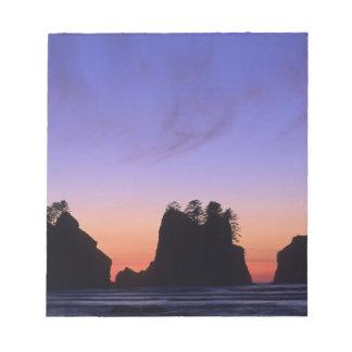 USA, Washington, Olympic National Park, Shi-shi Scratch Pads