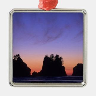 USA Washington Olympic National Park Shi-shi Ornament