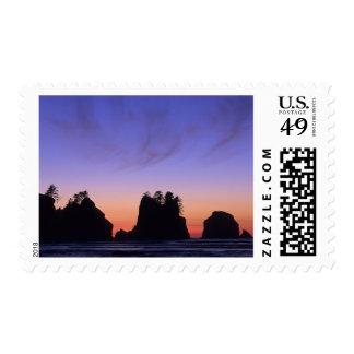 USA, Washington, Olympic National Park, Shi-shi Stamp