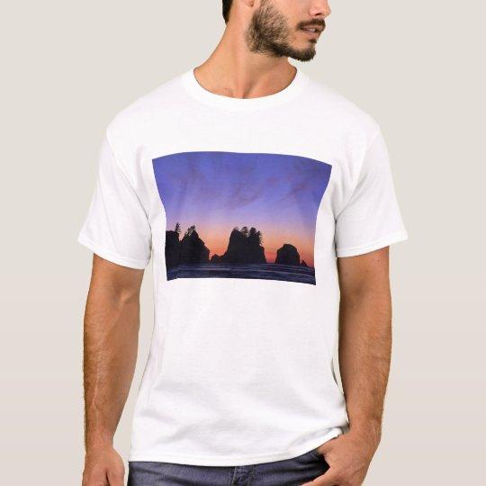 USA, Washington, Olympic National Park, Shi-shi T-Shirt