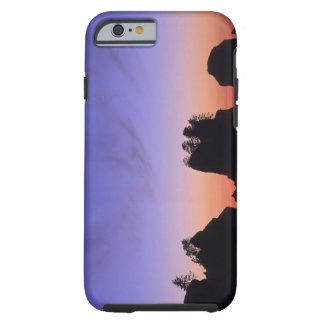 USA, Washington, Olympic National Park, Shi-shi Tough iPhone 6 Case