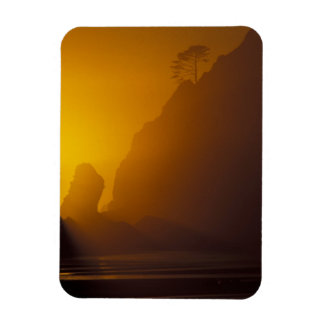 USA, Washington, Olympic Nat'l Park, Sunset, 2 Magnet