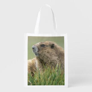 USA, Washington, Olympic NP, Olympic Marmot Grocery Bag