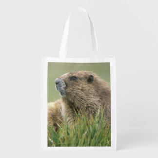 USA, Washington, Olympic NP, Olympic Marmot Reusable Grocery Bags