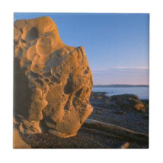USA, Washington, Orcas Island, Boulder Ceramic Tile