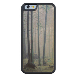 USA, Washington, Orcas Island, Moran State Park Carved Maple iPhone 6 Bumper Case