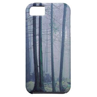 USA, Washington, Orcas Island, Moran State Park iPhone SE/5/5s Case
