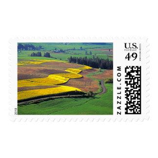 USA, Washington, Palouse, Whitman County 2 Postage Stamp