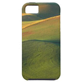 USA, Washington, Palouse, Whitman County iPhone 5 Cover