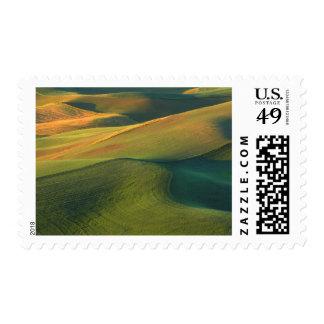 USA, Washington, Palouse, Whitman County Stamp