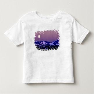 USA, Washington, Port Angeles, Olympic National Toddler T-shirt