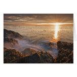 USA, Washington, San Juan Islands.  A dramatic Card