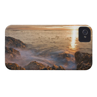 USA, Washington, San Juan Islands.  A dramatic iPhone 4 Cover