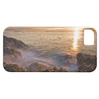 USA, Washington, San Juan Islands.  A dramatic iPhone SE/5/5s Case