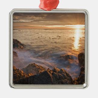 USA, Washington, San Juan Islands.  A dramatic Metal Ornament