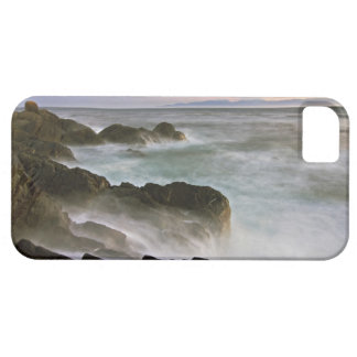 USA, Washington, San Juan Islands.  Waves crash iPhone SE/5/5s Case