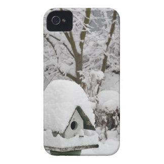 USA, Washington, Seabeck. Close-up of bird house iPhone 4 Cover