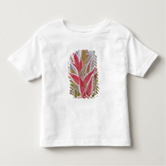 USA, Washington, Seabeck. Close-up of frost on Toddler T-shirt